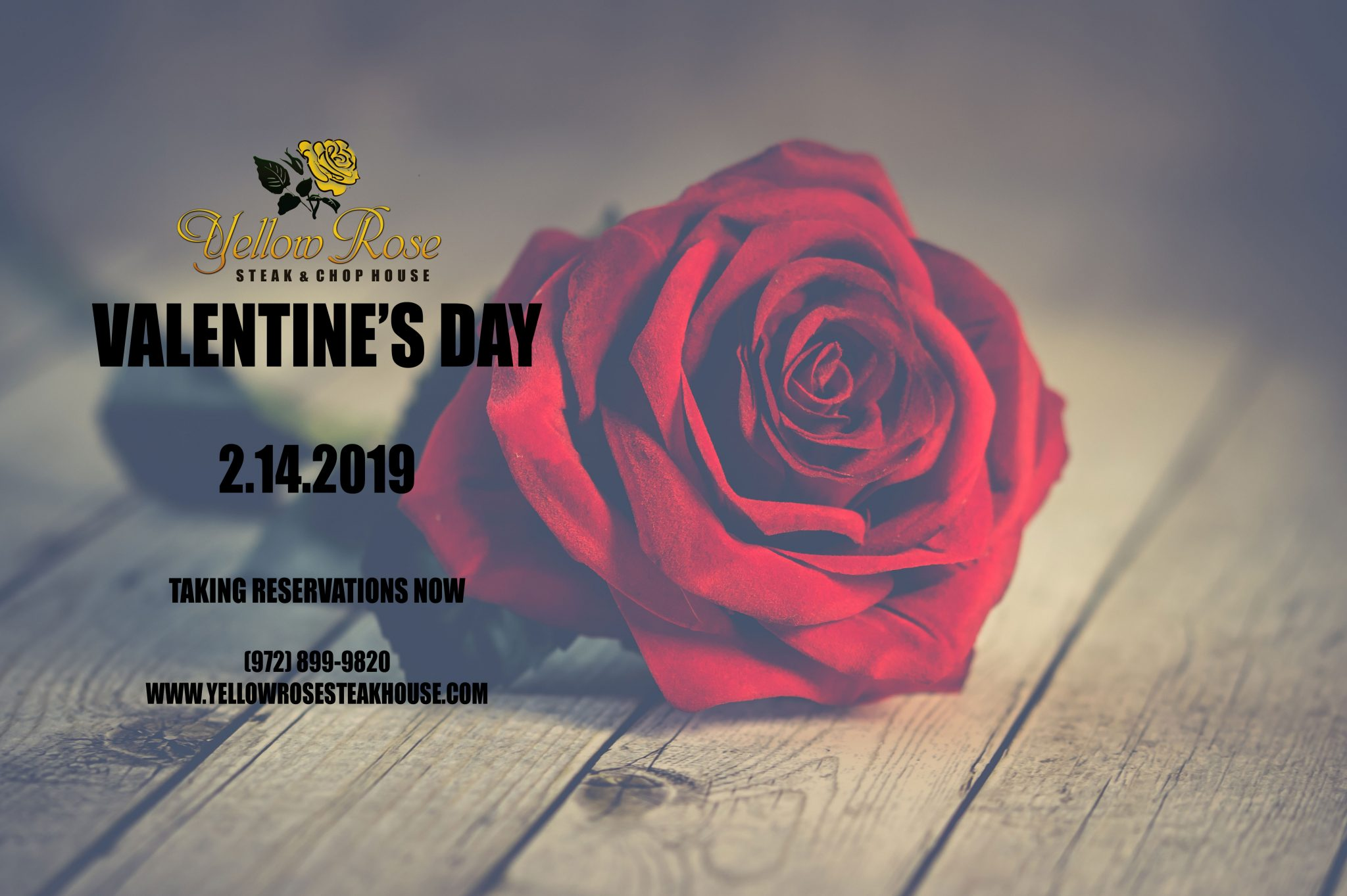 Valentines Day 2019 Yellow Rose Steak Chop House
